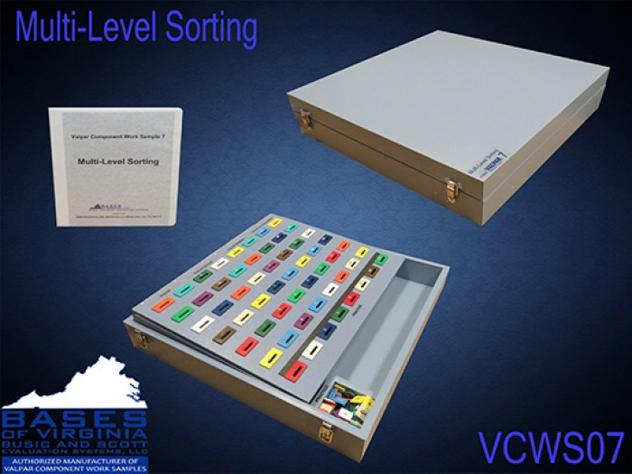 VCWS07 Multilevel Sorting Work Sample 07
